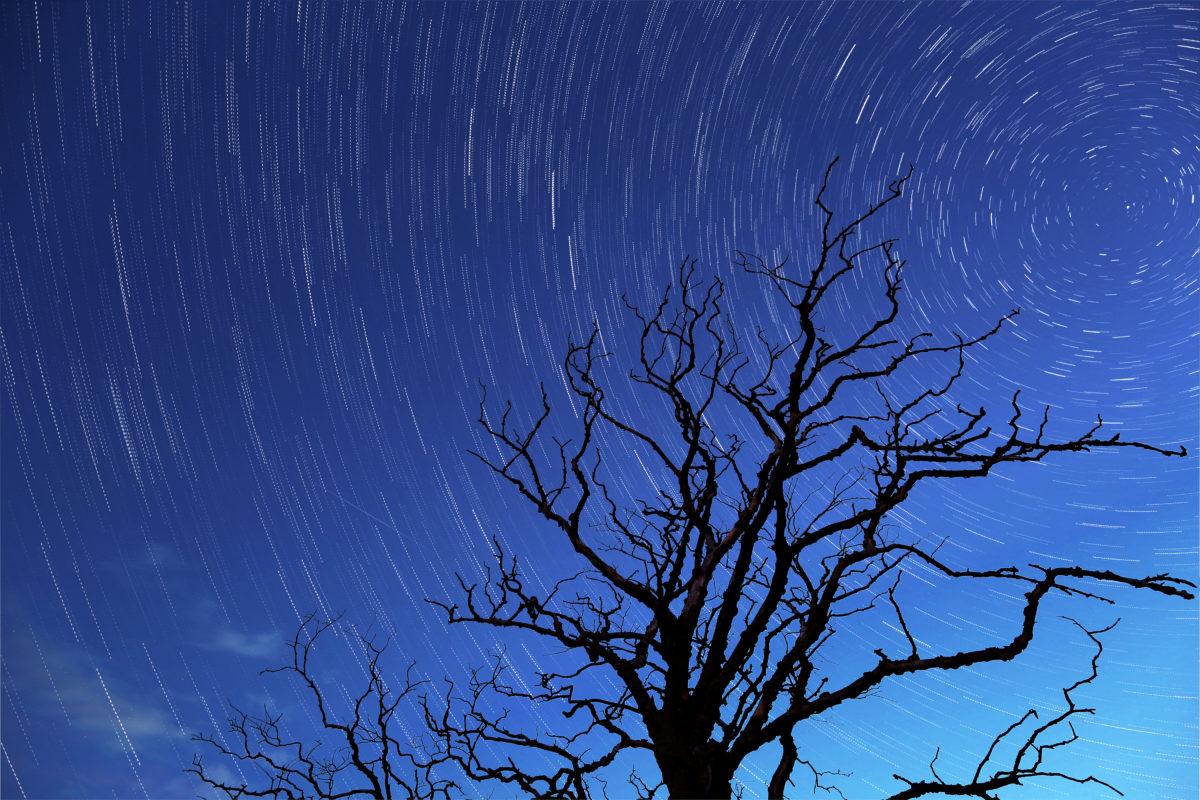 Star Trails (c) Gary Lintern Photography