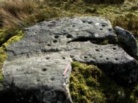 Cup-and-ring marked stone, Goldsborough, Baldersdale. (Photo Paul Brown)