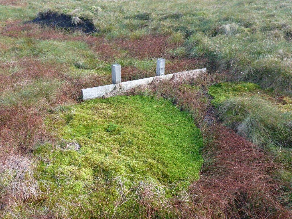 Peatland restoration on MOD estate image