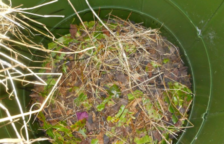 Image of inside of a compost bin