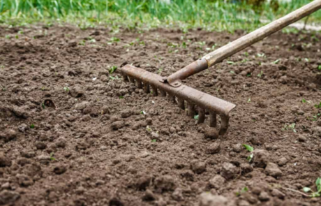 Image of soil and rake for no dig gardening system
