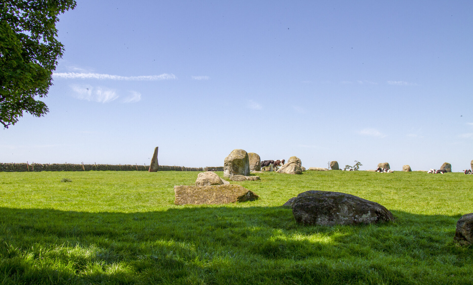 Picture of the stones Long Meg and her daughters