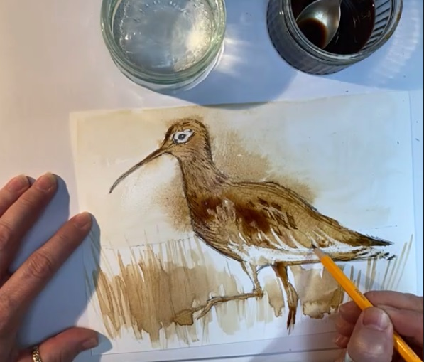 Image of hands, paper and pencil drawing a curlew