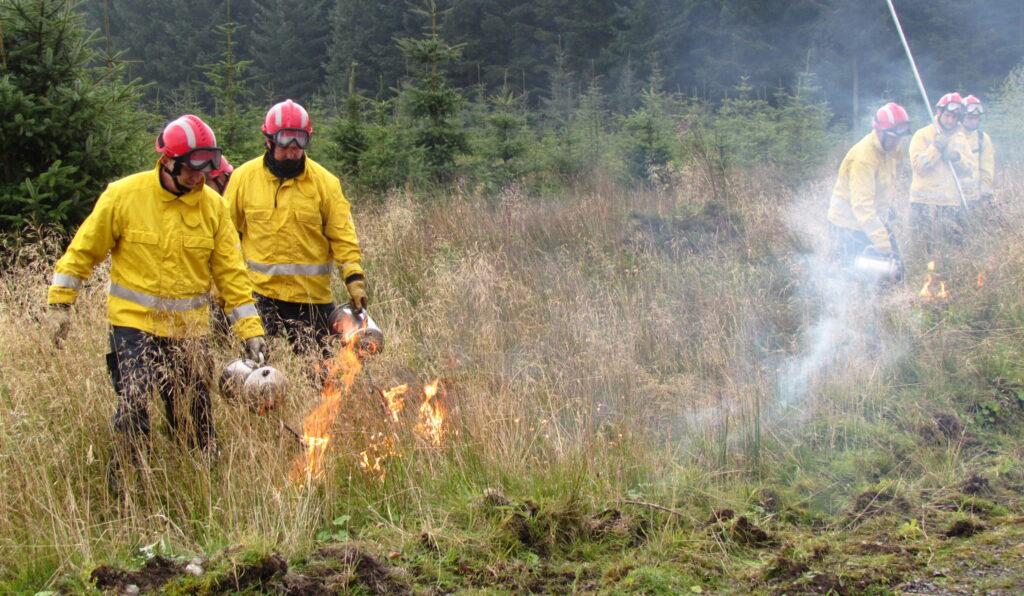 Moorland fires image