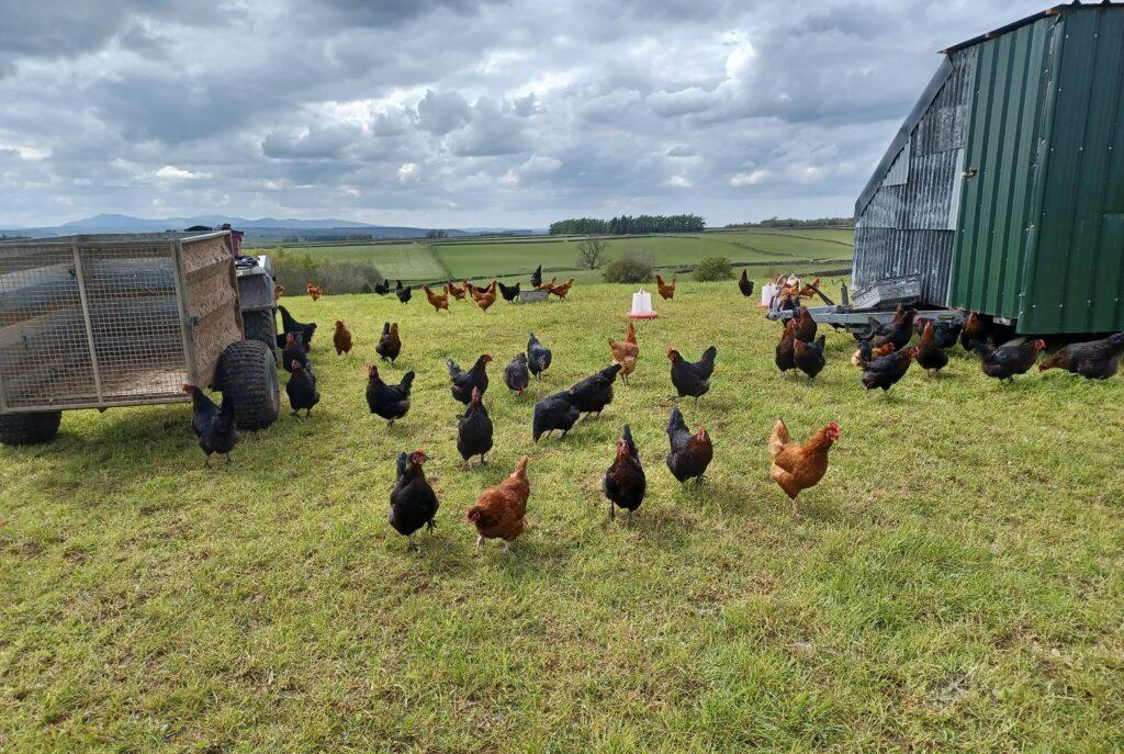 Fellfoot Forward Farm Futures image