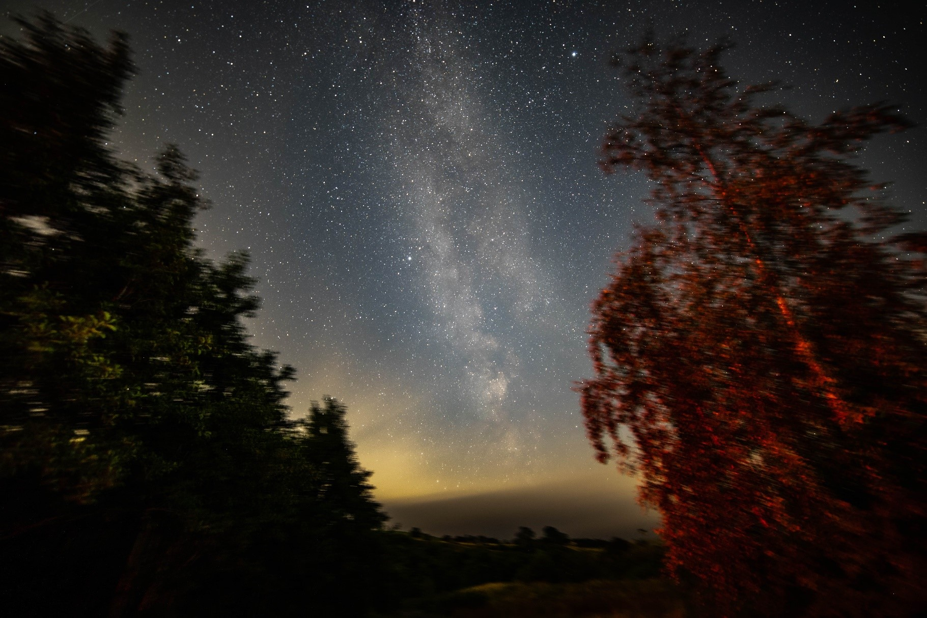 Image of night sky with the milky way and stars with the silhouette of trees